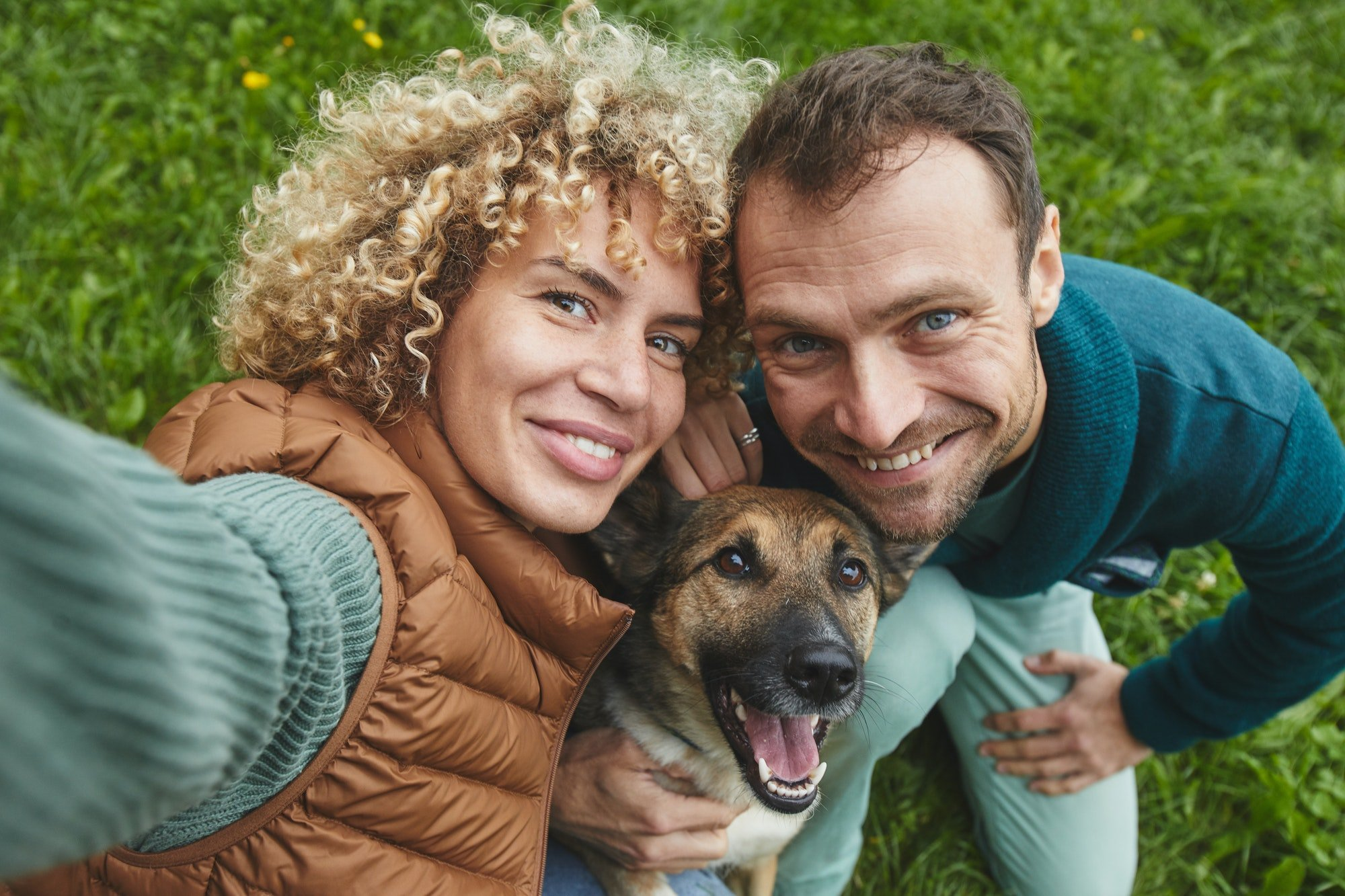 perils of lyme disease in dogs how to completely treat it