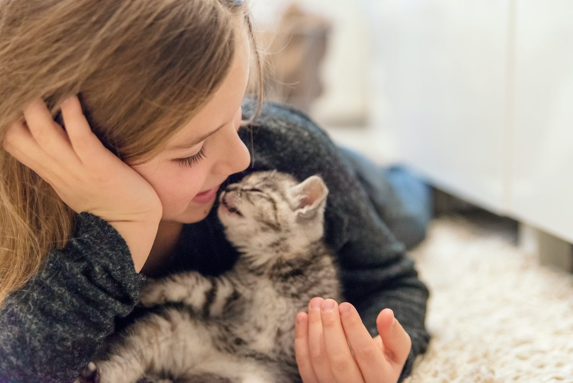 learn from experts are pets good for mental health