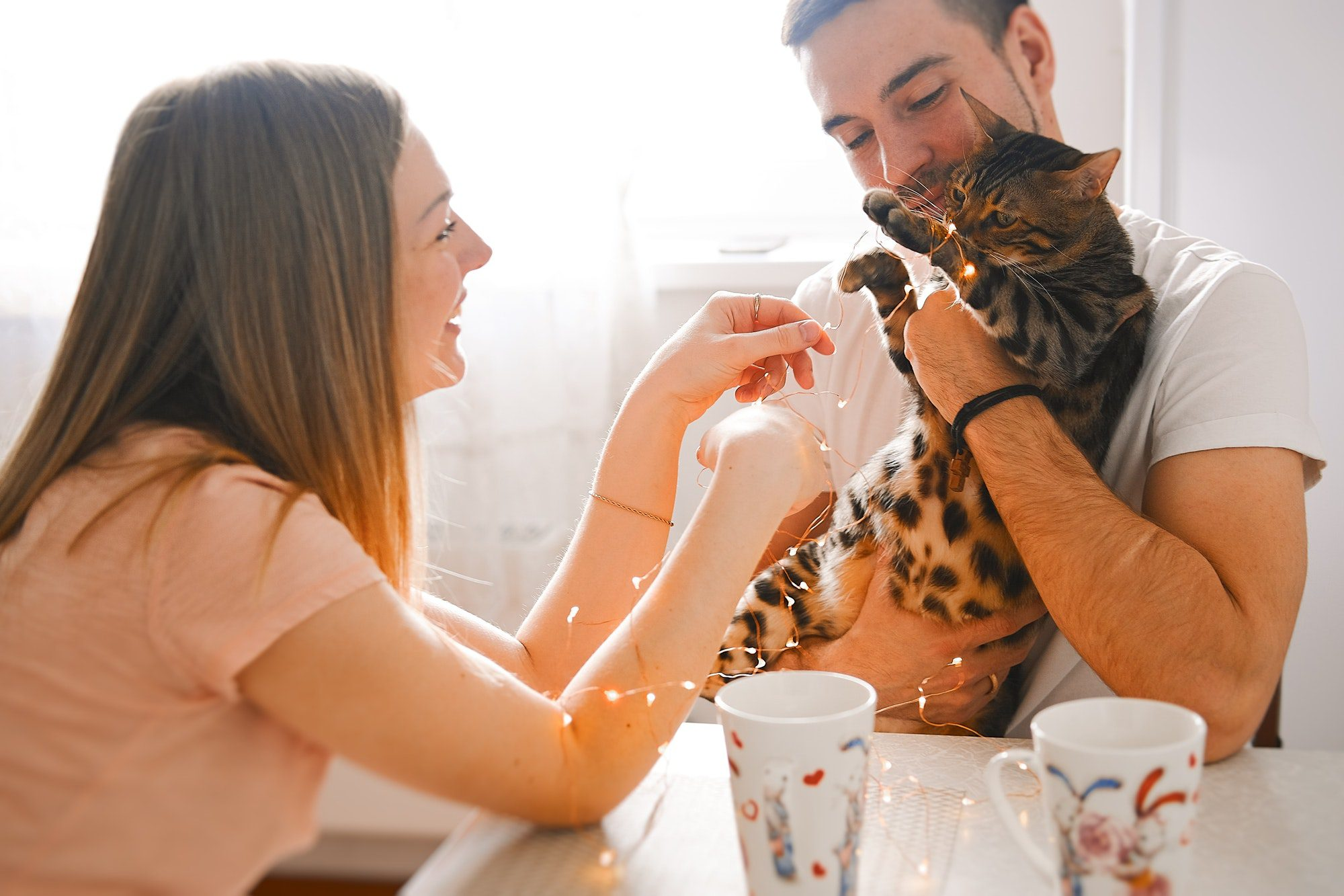 7 alarming pet emergencies