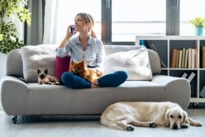 best pets for your home